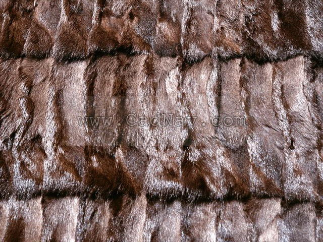 Raw Pine Squirrel Skins texture - Image 351 on CadNav