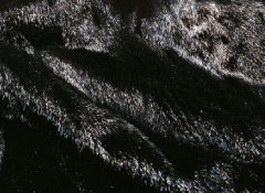 Dressed Bear Skins texture