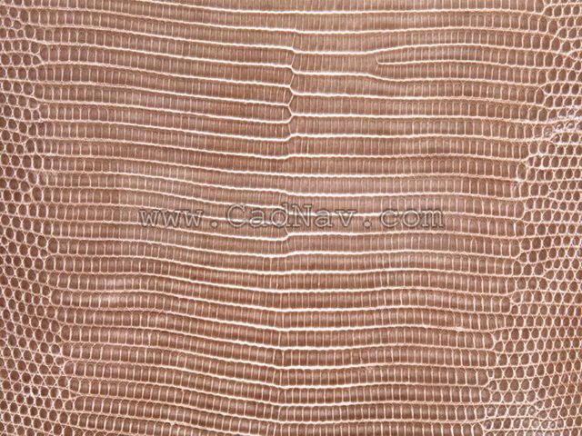 Simulation snakeskin texture