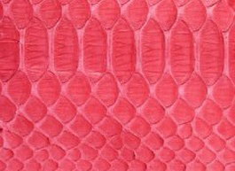 Snake skin raw leather texture