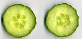 Cucumber slices texture