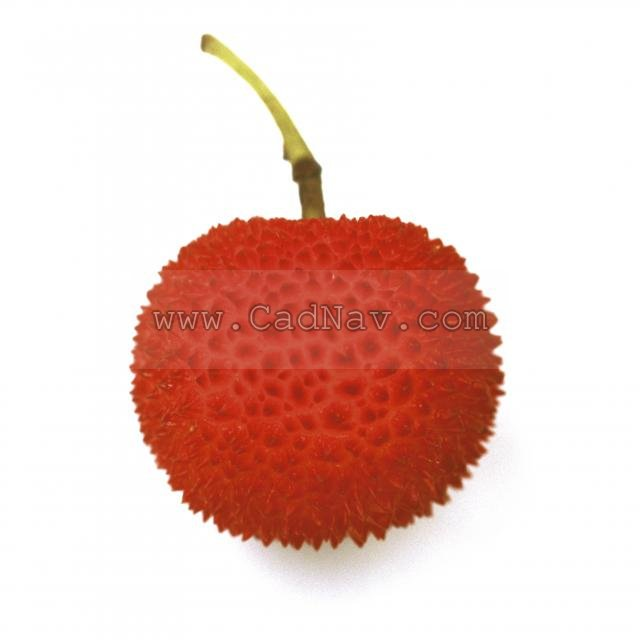 Fresh lychees texture
