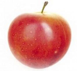 Apple texture
