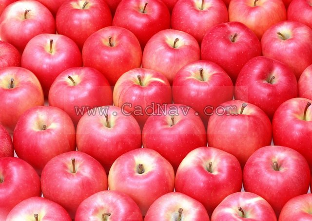 Red apple(11P) texture