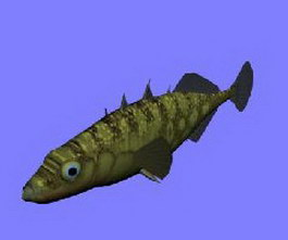 Long-spine porcupine fish 3d model