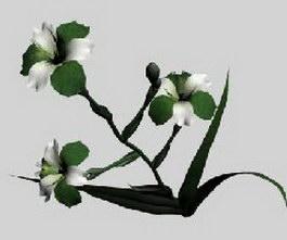 Ayumi Flowers 3d model