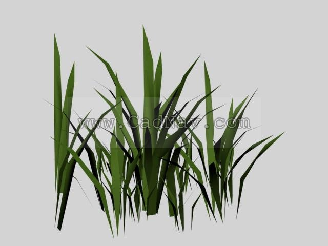 Bamboo Grass 3d Model 3ds Max 3ds Files Free Download