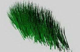 Aquatic weed 3d model