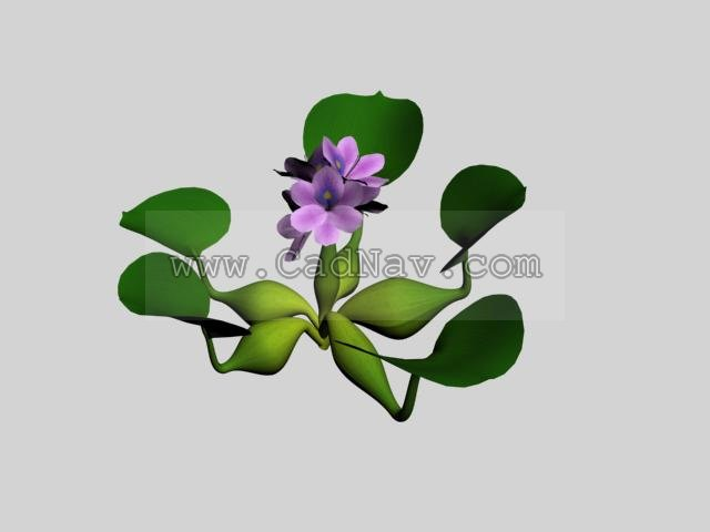 Water Hyacinth 3d Model 3ds Max 3ds Files Free Download