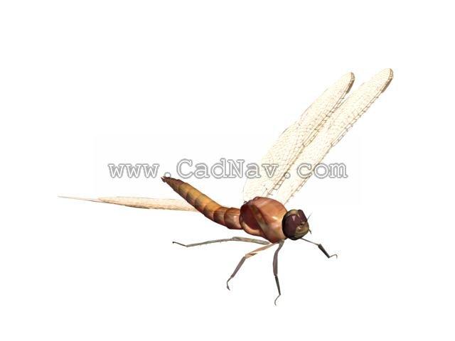 dragonfly 3d model 3ds max files free download modeling 1443 on cadnav
