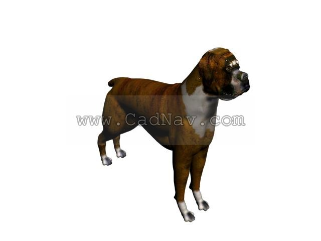 Boxer Dog 3d Model 3ds Max 3ds Files Free Download
