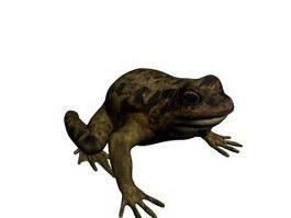 Frog 3d Model Free Download Cadnav Com