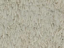 White Frieze carpet texture