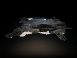 Leather shag rug 3d model