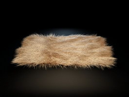 Long hair carpet 3d model