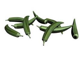 Green chilli 3d model