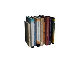 Assorted books 3d model