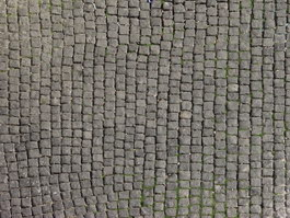 Lichen Grey Brick stone pavement texture