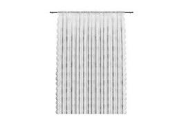 Transparent shower curtain 3d model