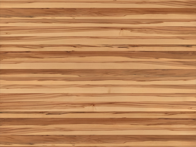 American beech texture image on cadnav