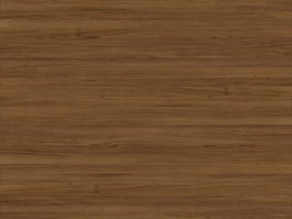 European White Oak texture