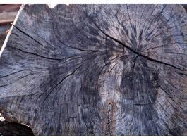 Black saw kerf texture