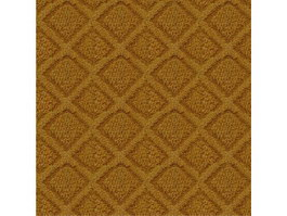 Chenille shaggy carpet texture