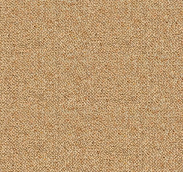 Carpet Texture For 3ds Max Carpet Vidalondon