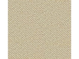Loop pile carpet texture