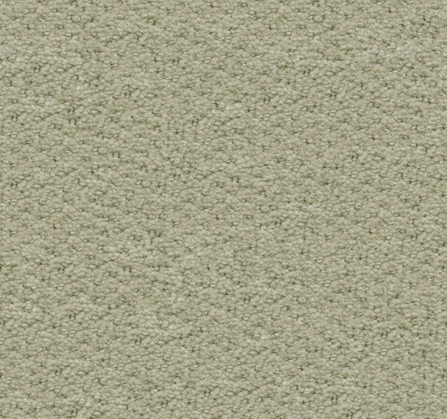 cream carpet texture. Loop Tufted Carpet Texture Cream E