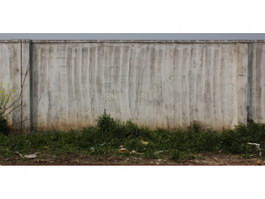 Concrete and weeds texture