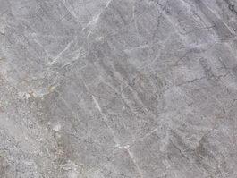 Venus Grey Marble Texture