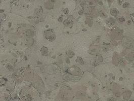 France Moon Grey Limestone texture