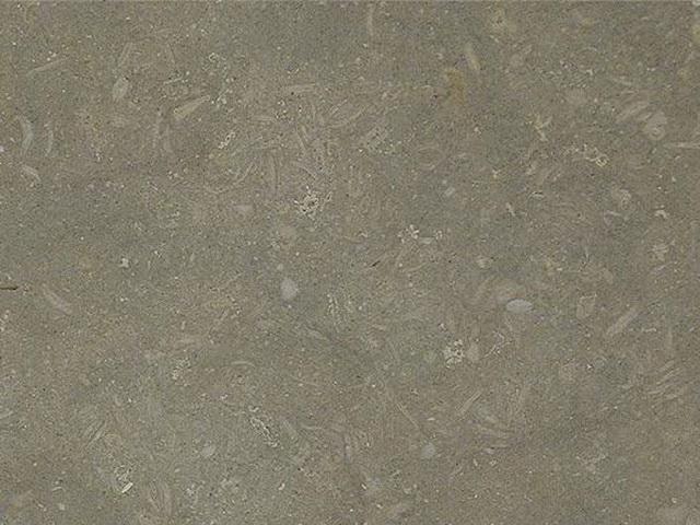 Pewter Fossil Limestone Texture Image 7856 On Cadnav