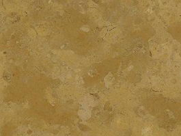 Italy Giallo Dream Limestone texture