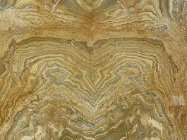 Fancy Yellow Quartzite texture