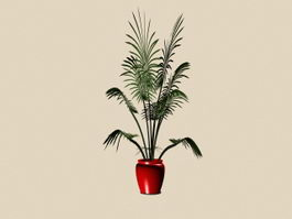 Potted plant bonsai 3d model