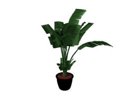 Artificial potted banana tree 3d model