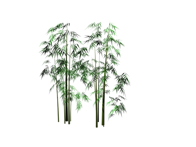 Bamboo Grove 3d Model 3dsmax Files Free Download