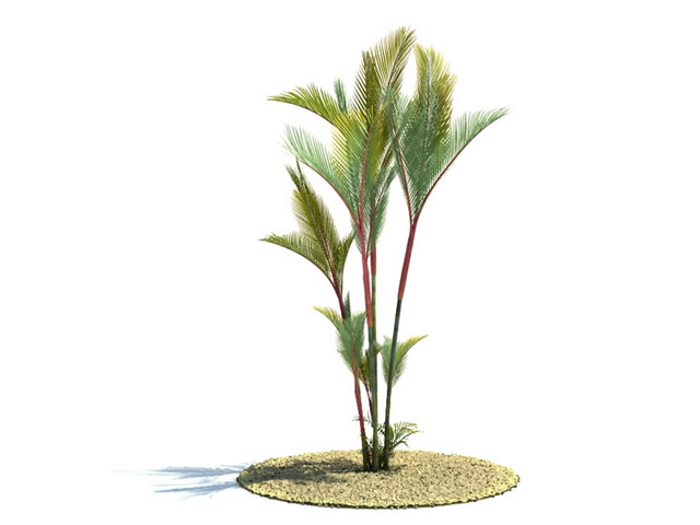 Large potted plants 3d model 3ds max files free download.