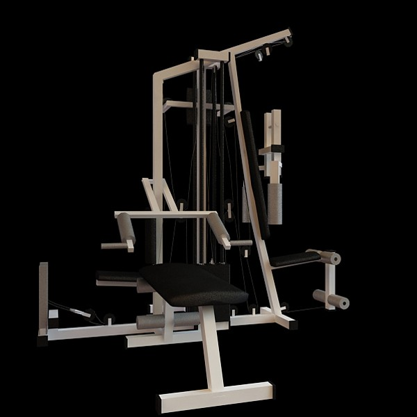 Commercial Gym Equipment 3d Model 3dsmax Files Free