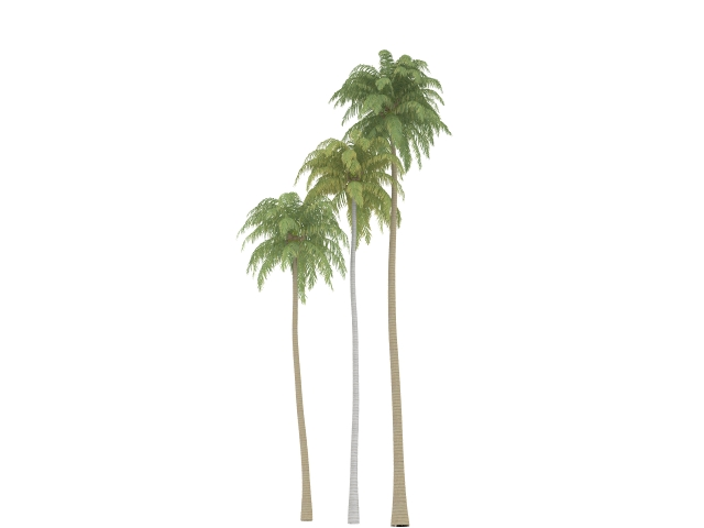 Coconut palm tree 3d model 3dsmax files free download modeling.