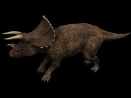 Triceratops prorsus 3d model