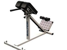 Lumbar hyperextension bench 3d model