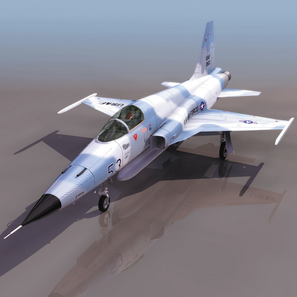 USAF F-5F Tiger II fighter aircraft 3d model 3DS files free download