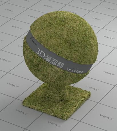 Green grass material rendering