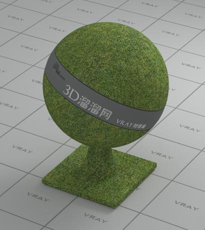 Grass land material rendering
