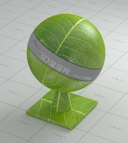 The file is made for vray for 3ds max