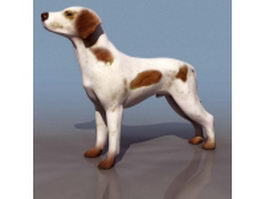 Scotland shepherd dog 3d model