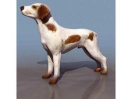 Scotland shepherd dog 3d model